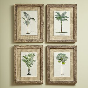 Palm Tree Framed Prints (Set of 4) by Birch Lane™