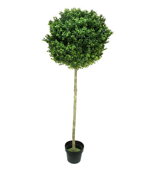 Two-Tone Artificial Murraya Ball Topiary Tree in Pot by Northlight Seasonal