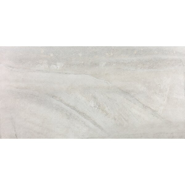 Enrichment 12 x 24 Porcelain Field Tile in Icicle by Parvatile