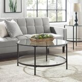 Margarita Coffee Table with Storage by Everly Quinn