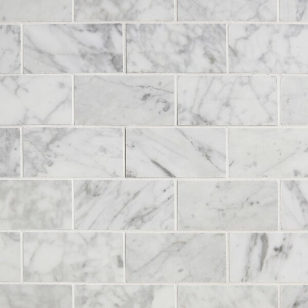 Value Series 2 x 4 Ceramic Mosaic Tile in Matte Carrara by WS Tiles