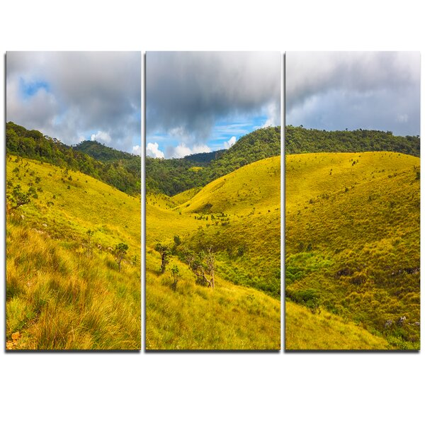 Green Everywhere - 3 Piece Photographic Print on Wrapped Canvas Set by Design Art