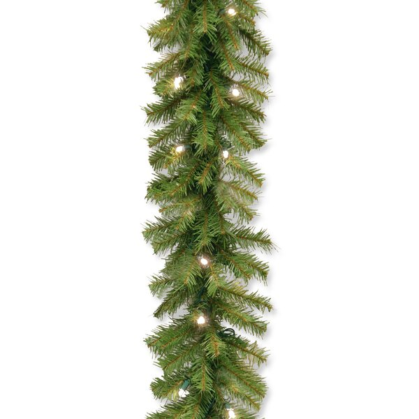 Norwood Fir Garland by Three Posts