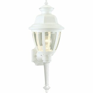 Order Philomena 1-Light Outdoor Sconce By Darby Home Co