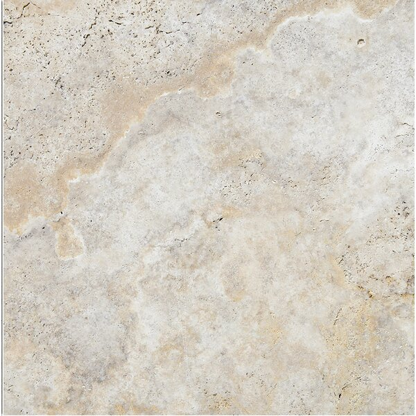 Scabos 24 x 24 Travertine Field Tile in Gray by Parvatile