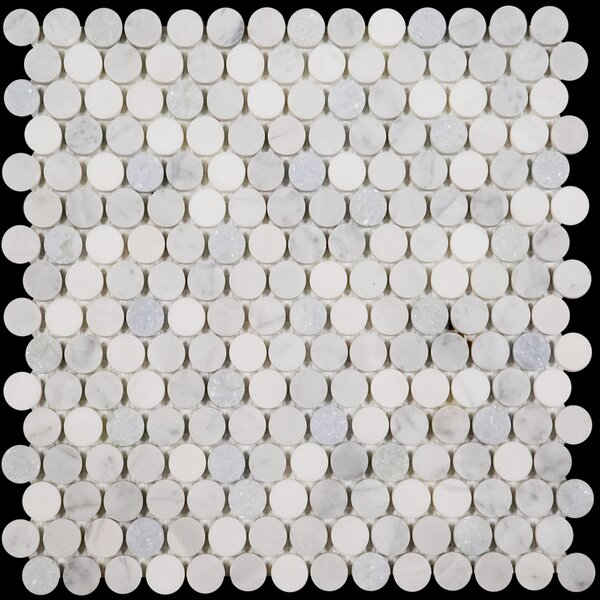 Penny Round Bianco Dolomite Honed 12 x 12 Marble Mosaic Tile in Blue Celeste by Ephesus Stones