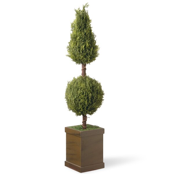 Floor Moss Topiary in Planter by National Tree Co.