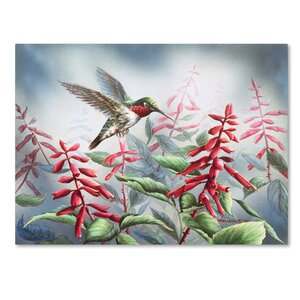 'Summer Hummingbird' Print on Wrapped Canvas by Trademark Fine Art