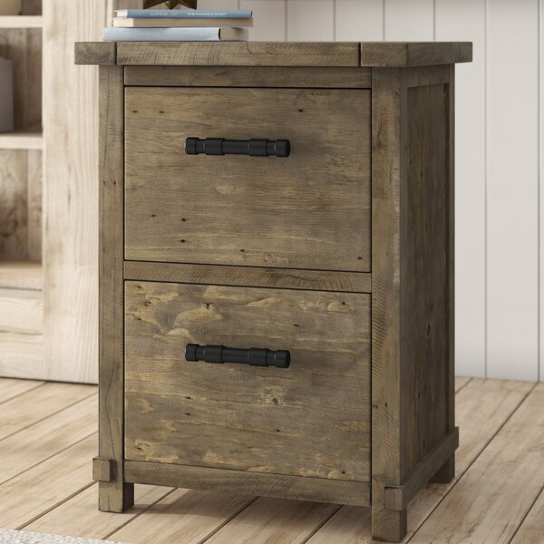Gertrude 2-Drawer Vertical Filing Cabinet by Lark Manor