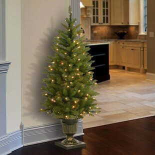 4 Green Fir Artificial Christmas Tree With 70 Clear Lights