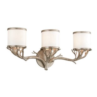 Buying Pascal 3-Light Vanity Light By Loon Peak