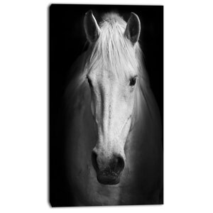 'White Horse Black and White' Photographic Print on Wrapped Canvas by Design Art