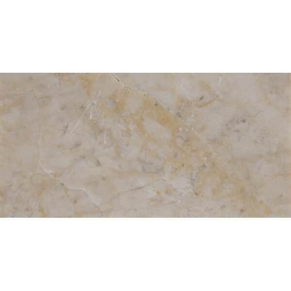 3 x 6 Marble Tile in Cream Cappuccino by MSI