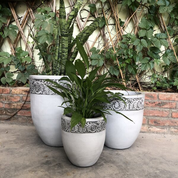 Olney Tall Fancy Rim 3-Piece Pot Planter Set by Charlton Home