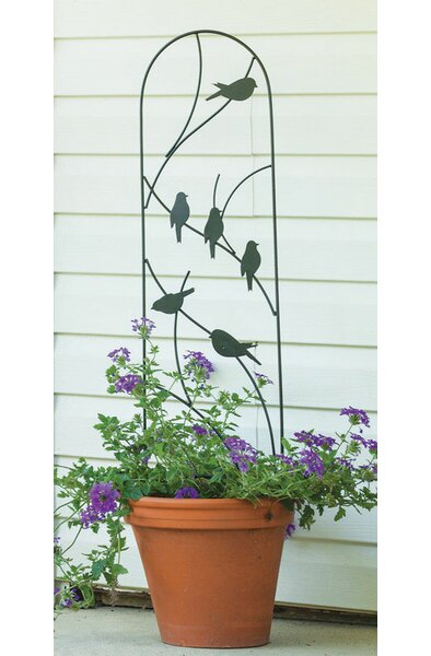 Planter Steel Arched Trellis by Panacea Products
