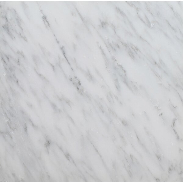 6 x 6 Arabescato Marble Tile in Polished White by Seven Seas