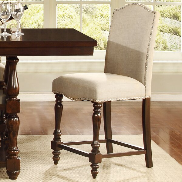 Basey Dinings Chair (Set of 2) by Darby Home Co
