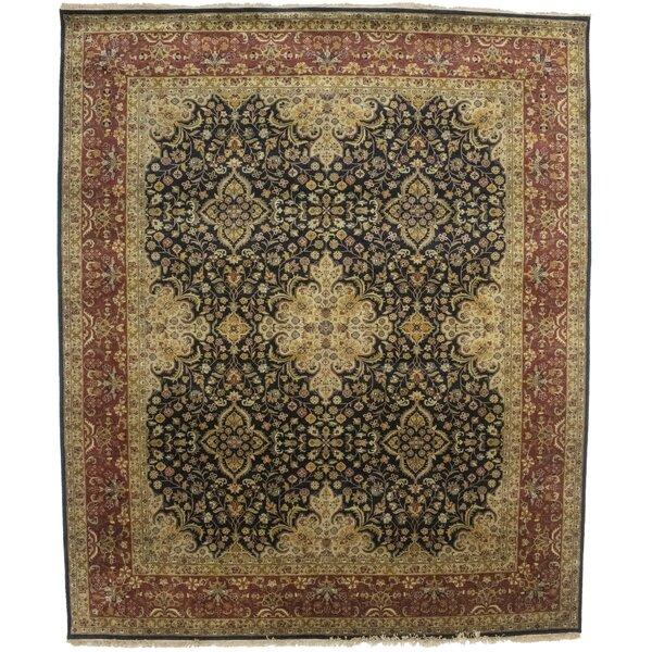 Annuziata Oriental Hand-Knotted Wool Black Area Rug