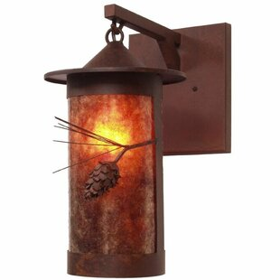 Guide to buy Pasadena 1-Light Outdoor Wall Lantern By Steel Partners