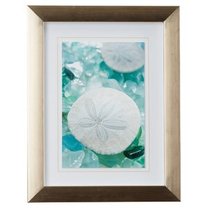 'Sea Glass and Sand Dollar' Framed Photographic Print by Highland Dunes