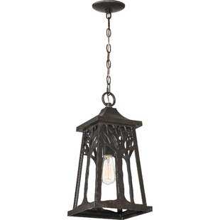Bargain Yeung 1-Light Outdoor Hanging Lantern By Millwood Pines