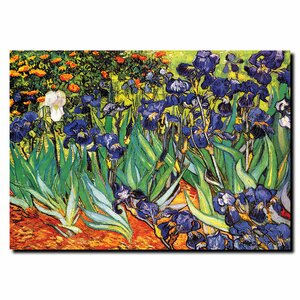 'Irises Saint-Remy' by Vincent Van Gogh Painting Print by Trademark Fine Art