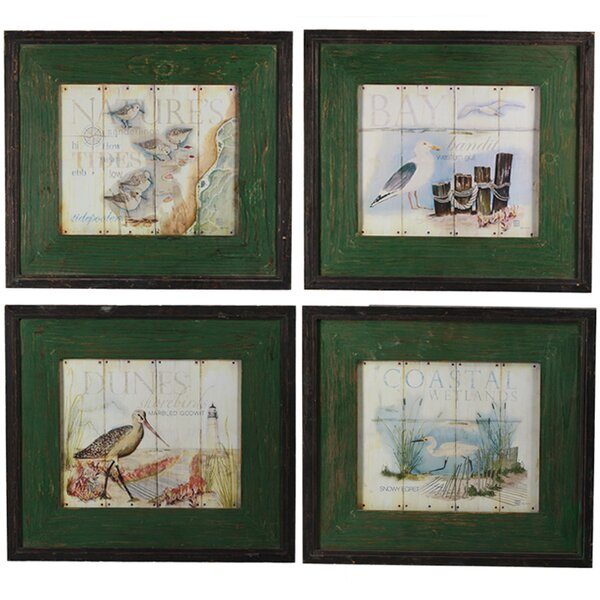 4 Piece Framed Graphic Art Print Set on Wood by Breakwater Bay