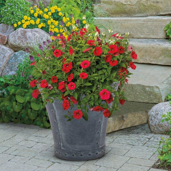 Rivanna Resin Pot Planter (Set of 2) by Suncast