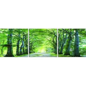Wood Mounted Sunlight Forest 3 Piece Photographic Print on Wrapped Canvas Set by 3 Panel Photo
