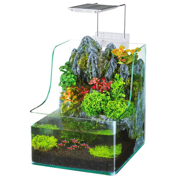1 Gallon AquaTerrium™ Aquarium Tank by Penn Plax