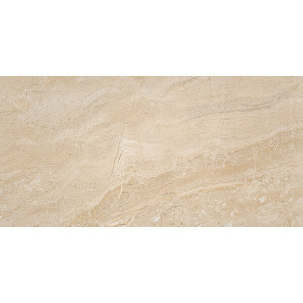 Aria Oro 24 x 48 Porcelain Field Tile in Beige by MSI