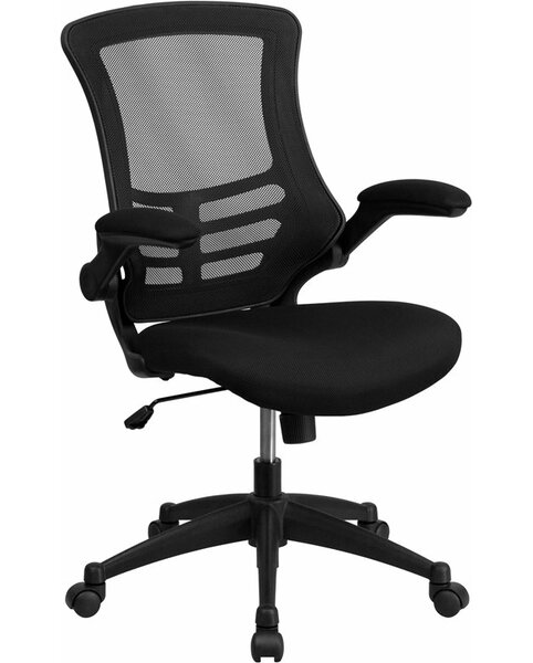 Dunson Mid-Back Ergonomic Mesh Office Chair by Ebern Designs