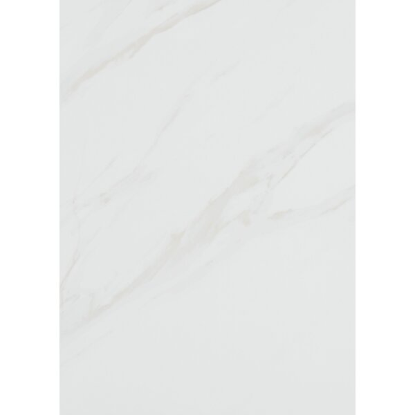 Florentine 10 x 14 Porcelain Field Tile in Carrara by Daltile
