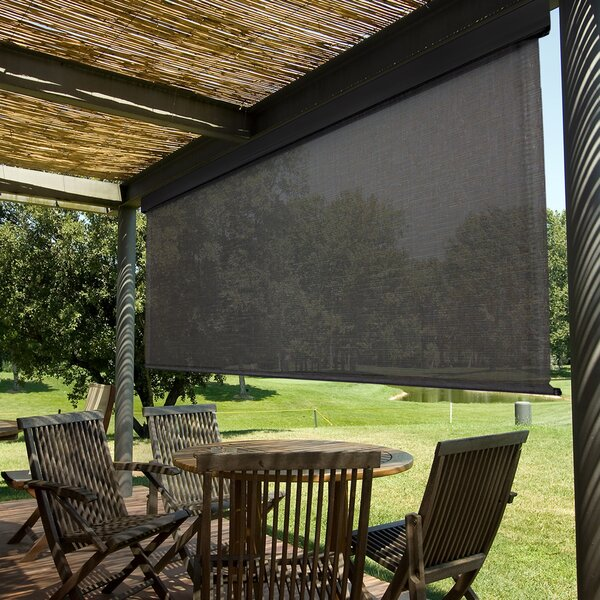 Eisner Heavy Duty Semi-Sheer Outdoor Solar Shade by Red Barrel Studio