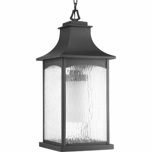 Find the perfect De Witt 1-Light Hanging Lantern By Darby Home Co