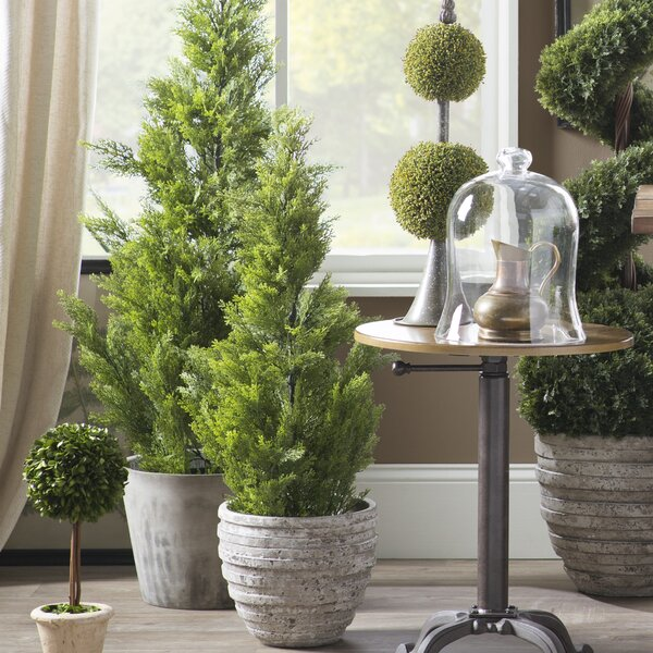 Floor Cedar Faux Plant in Pot by Charlton Home