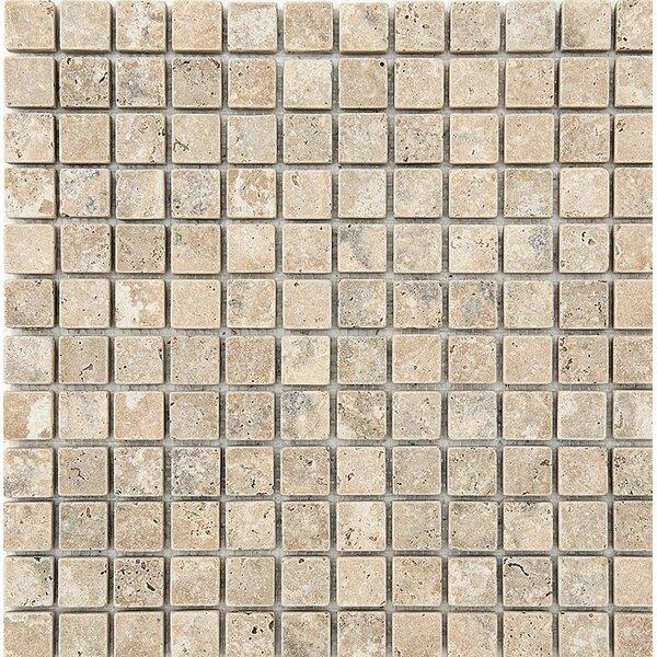 Philadelphia Mosaic 1 x 1 Stone Mosaic Tile Tumbled by Parvatile