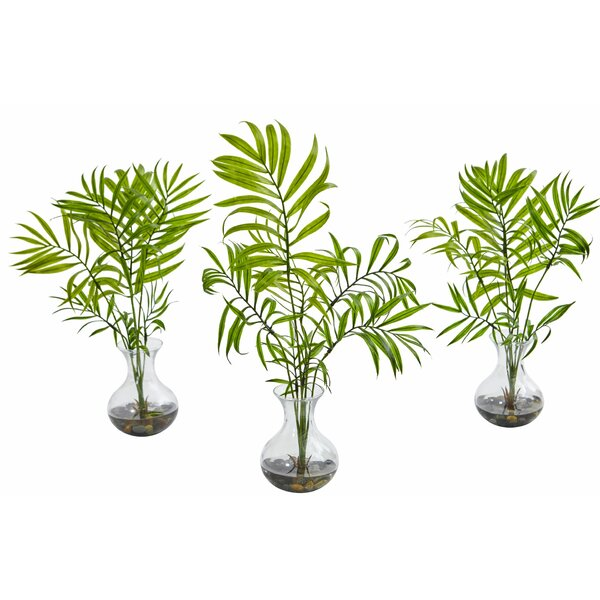 Mini Areca Floor Palm Plant in Vase (Set of 3) by Bay Isle Home