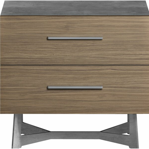 Raylee 2 Drawer Nightstand by Brayden Studio
