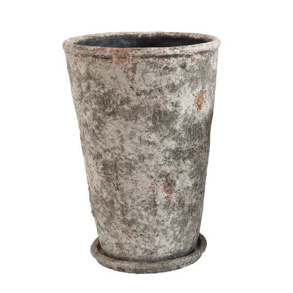 Knipe Cement Pot Planter by Ophelia & Co.