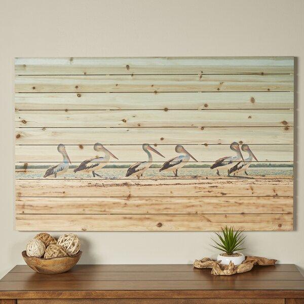 Pelican Flock Wall Art by Birch Lane™