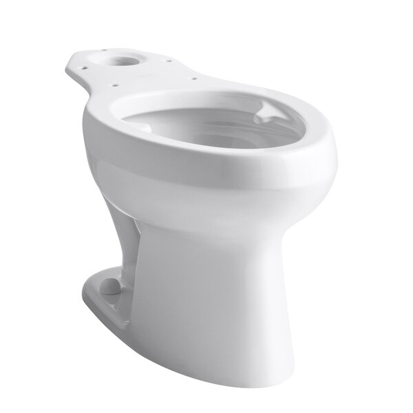 Wellworth Toilet Bowl with Pressure Lite Flushing Technology and Bed Pan Lugs by Kohler