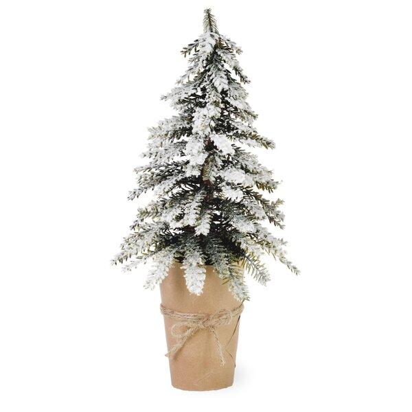 Floor Cedar Tree In Pot (Set of 2) by Gracie Oaks