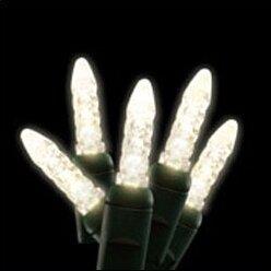 70ct LED Cool Lamp String Light by American Lighting LLC