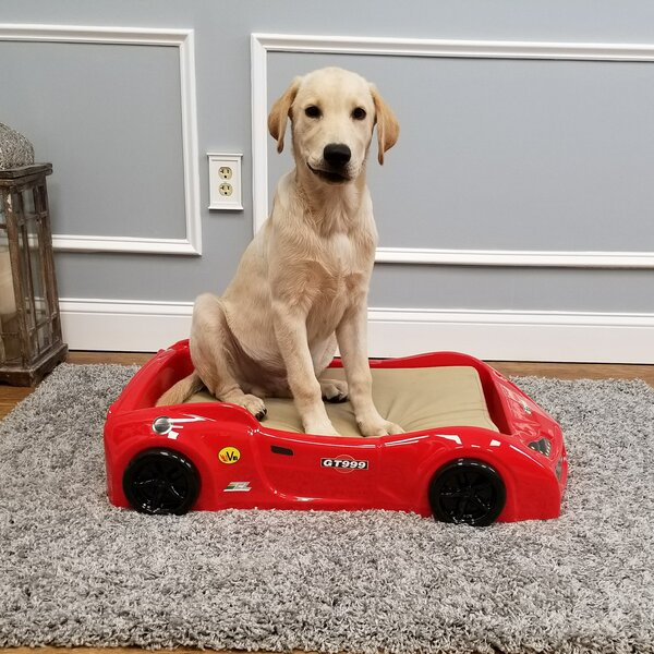 Dog Car Bed by Rugnur