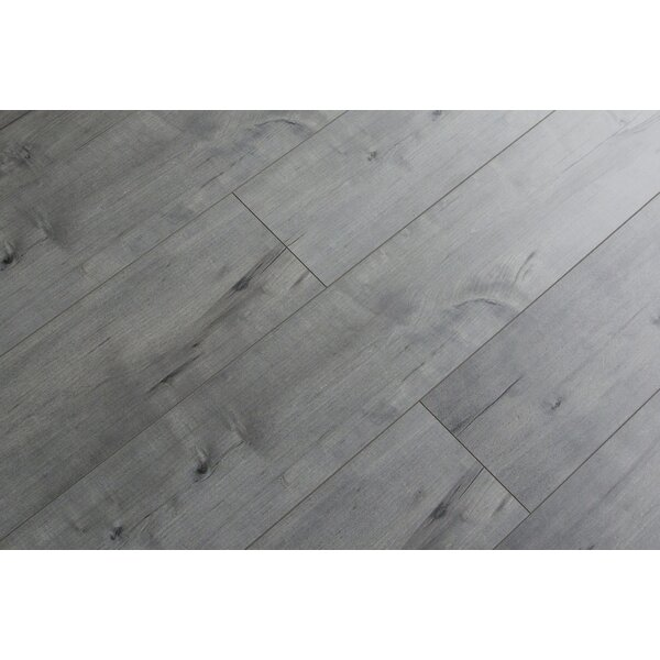 Rare Species 8 x 49 x 12mm Laminate Flooring in Gray (Set of 4) by Christina & Son