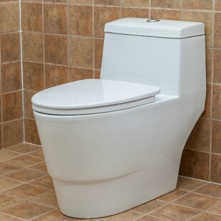 Modern Dual Flush Elongated One-Piece Toilet (Seat Included) ByFine Fixtures