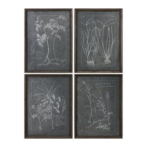 Root Study 4 Piece Framed Graphic Art Set by Laurel Foundry Modern Farmhouse