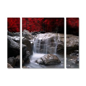 'Red Vison' by Philippe Sainte-Laudy 3 Piece Photographic Print on Wrapped Canvas Set by Trademark Fine Art