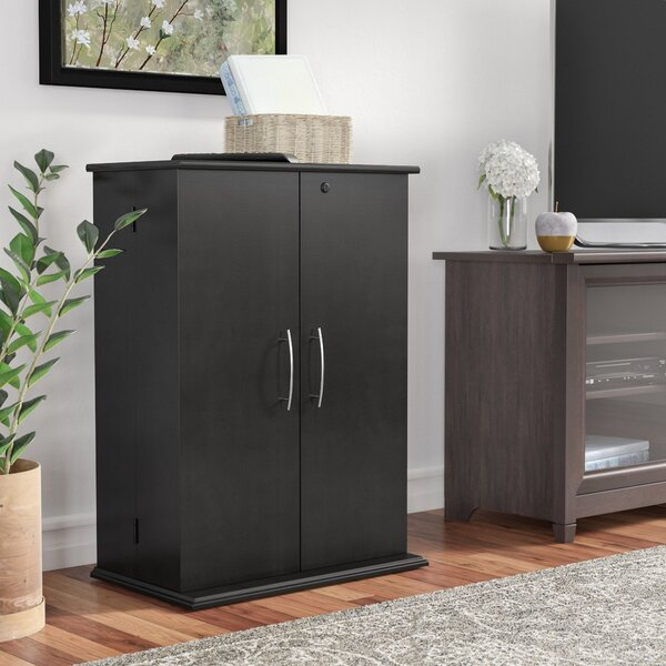 Pinevalley 2 Door Storage Cabinet by Red Barrel Studio